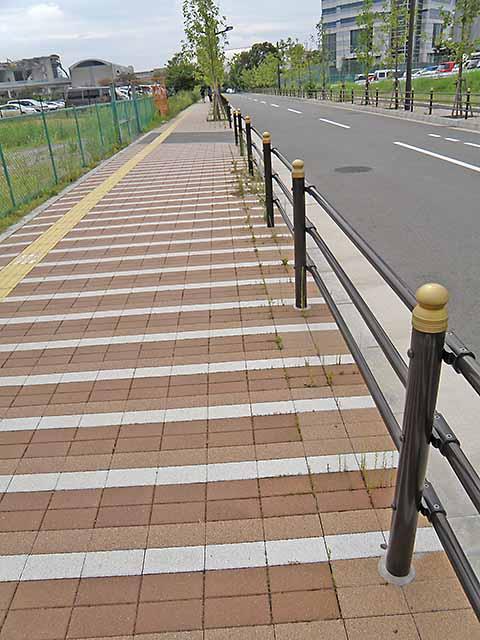 草の生えた歩道