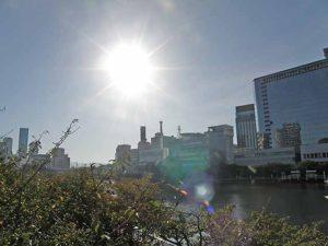 大川に射す朝日。