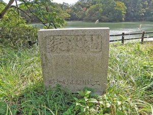 マキノ高原191021_033