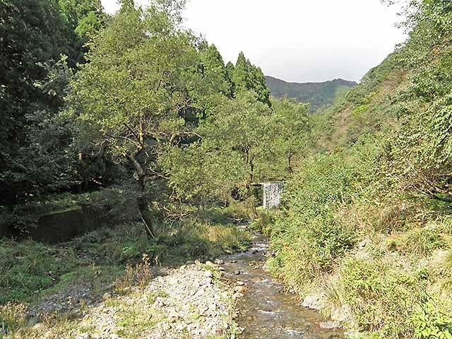 マキノ高原191021_053