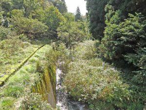 マキノ高原191021_054